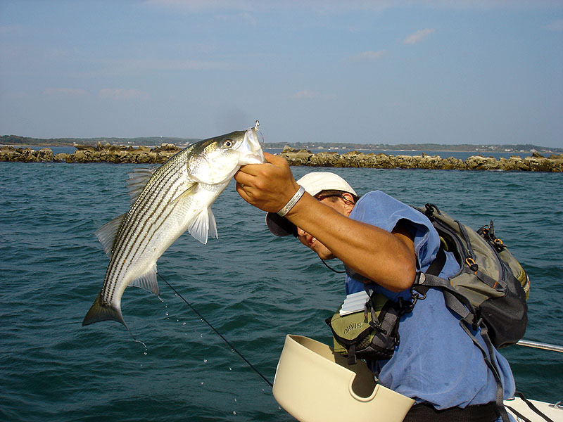 Maine saltwater fishing photos maine fishing pictures for Deep sea fishing in maine